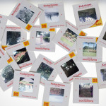 Digitize Slides or old Slide Film